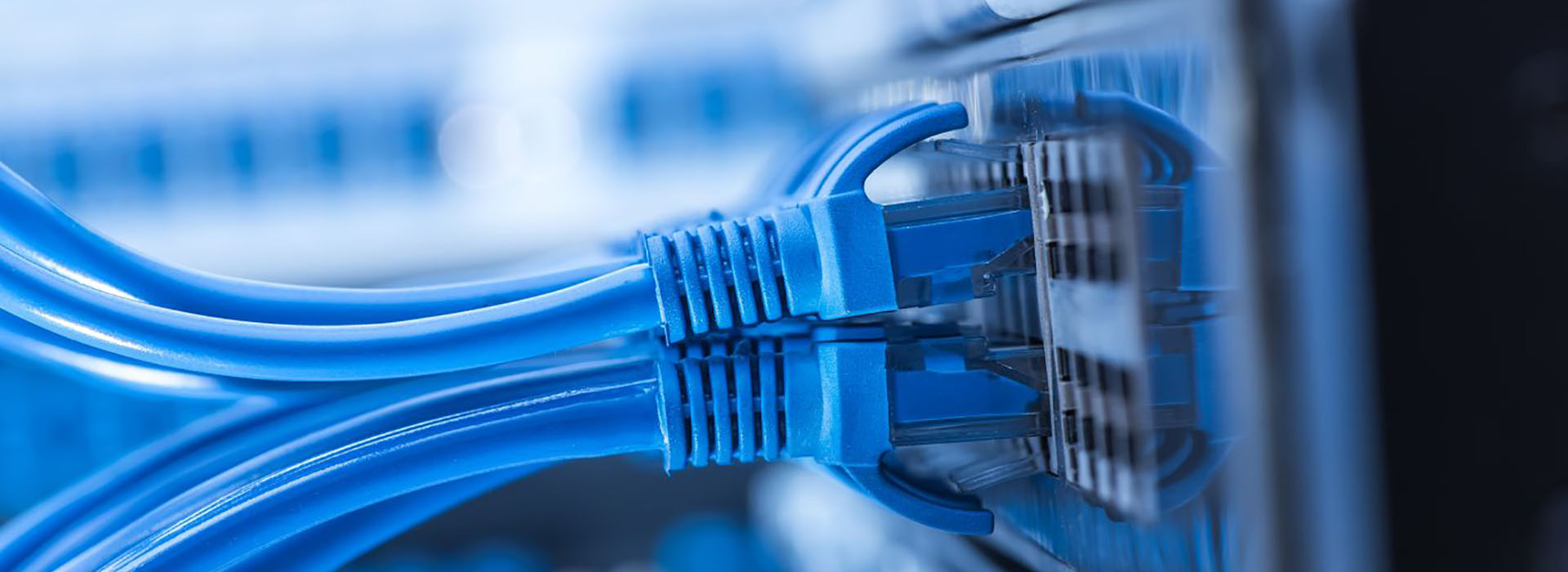 network-1920x700